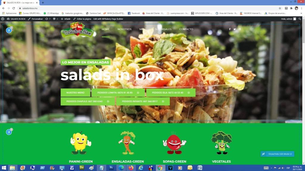 salads-in-box